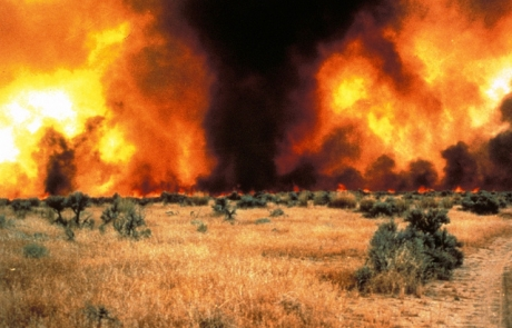 $5M Bail for California Arsonist